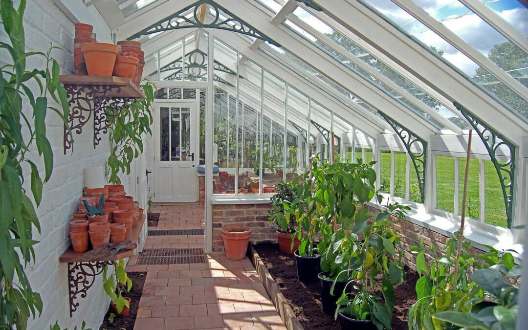 Victorian Glasshouses: From Derelict to Delightful